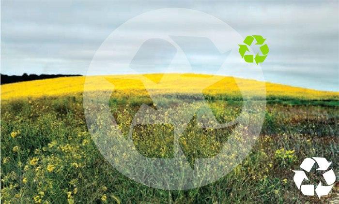 Economia circular necessita mais gestão de resíduos do que a linear
