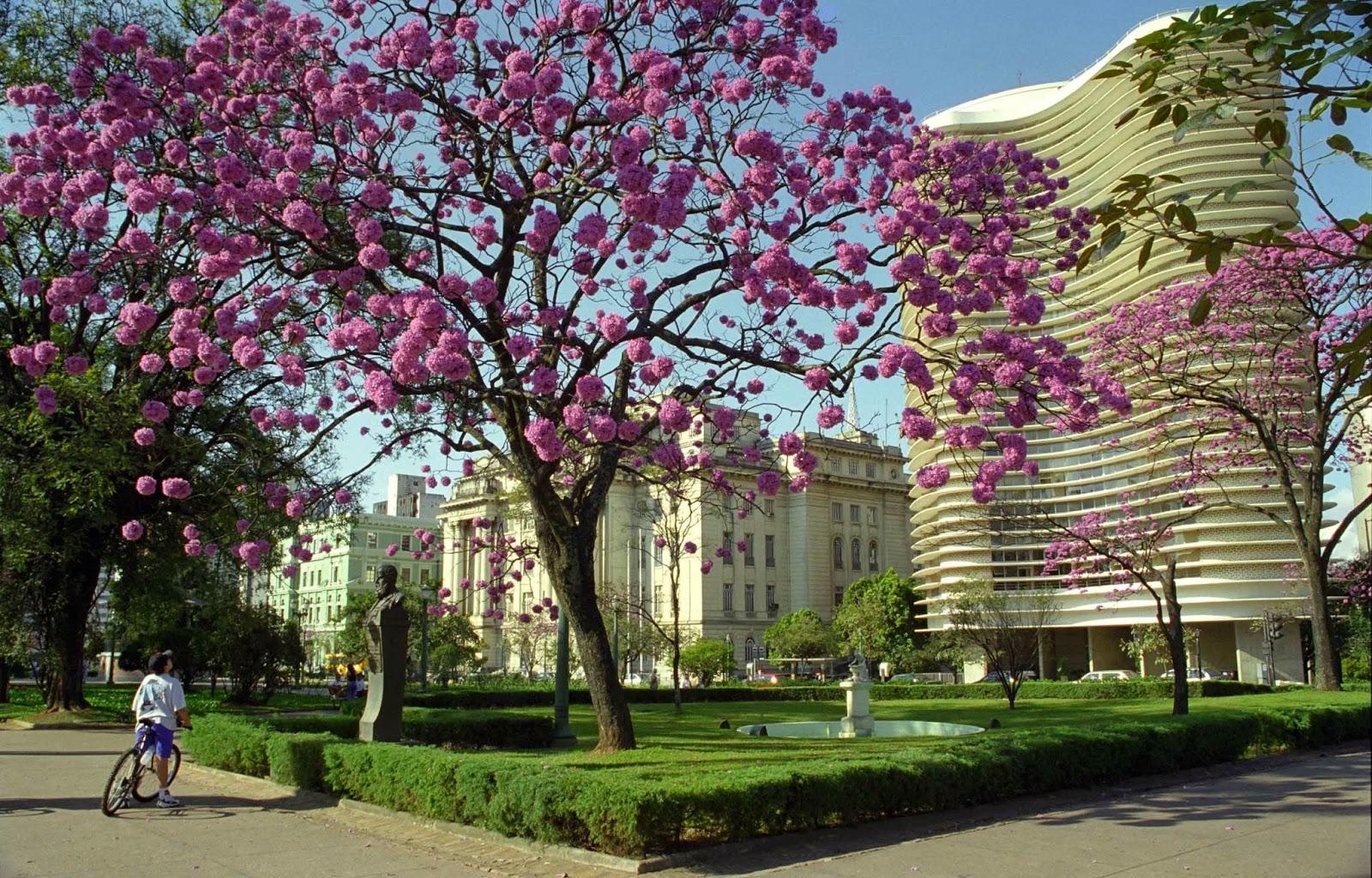 Belo Horizonte tem lei específica sobre o gerenciamento de resíduos da Construção Civil